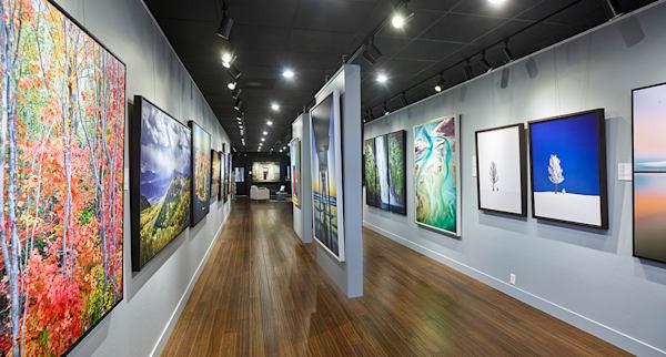 Gallery website cropped dg6jxl