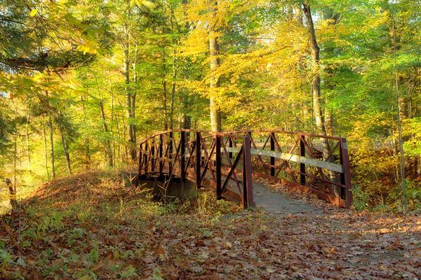 Bridge To Adventure