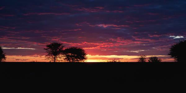 Matej Silecky African Sunsets, Botswana, Safari Travel Photography