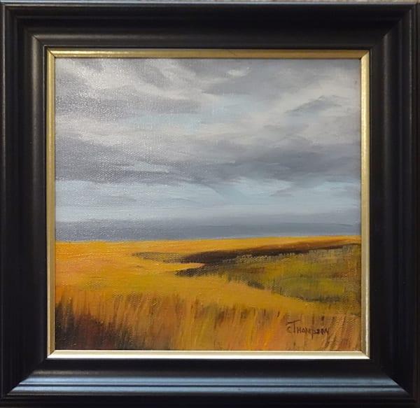 Fall Prairie Grass