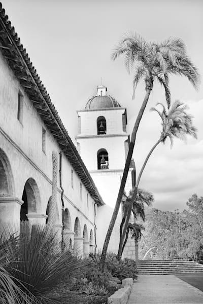 Santa Barbara Palm Trees Photography Art | Rosanne Nitti Fine Arts