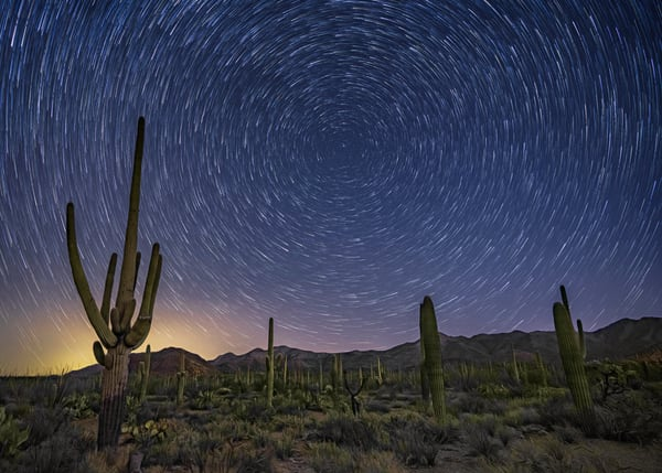 Starry Skies Over Tucson Mountain Park Photography Art | Carol Brooks Parker Fine Art Photography