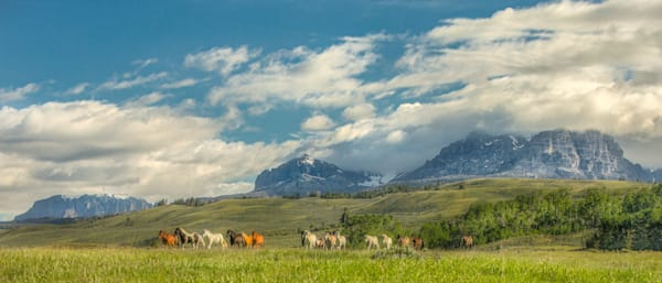 Under The Big Sky Photography Art | JL Grief Fine Art Photography