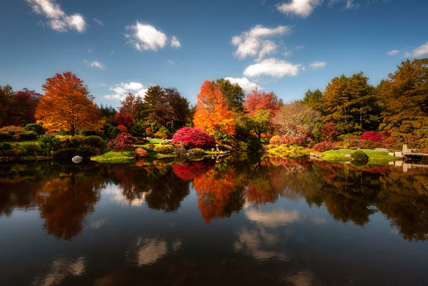 Asticou Garden Reflections Photography Art | Taylor Photography