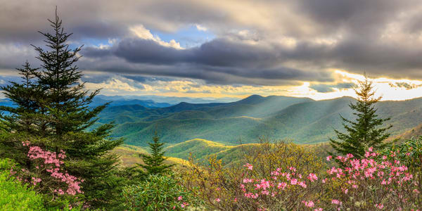 Springtime Splendor Art | Red Rock Photography