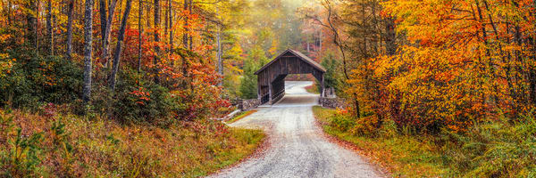 Covered Bridge Of Dupont State Forest Art | Red Rock Photography
