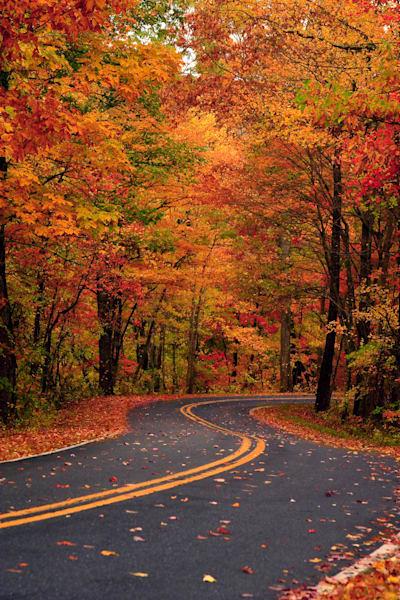 Color On Cedar Mountain V Art | Red Rock Photography