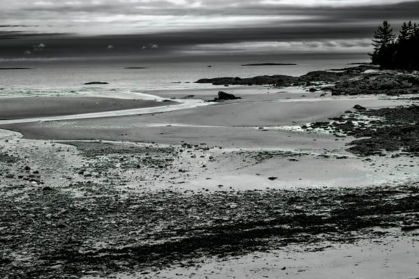 Maine,Seashore,Water,B&W,Black and White