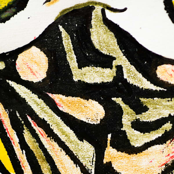 Gleaned Image 40C