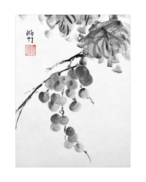 hombretheartist, sumi-e, grapes, two, ink