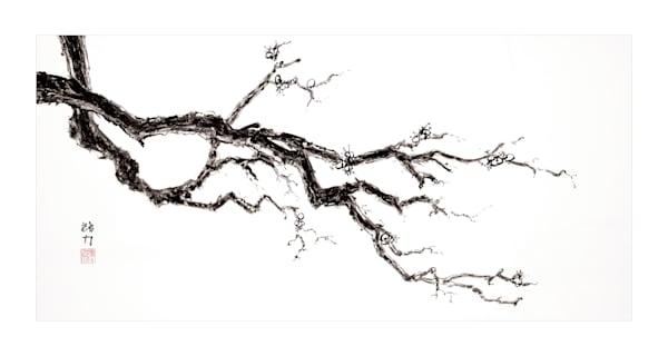 sumi-e, blossom, plum blossom one, black, ink