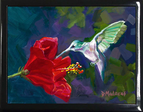 Hummingbird & the Hibiscus Keepsake Box Black