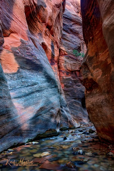 Kanarraville Slot Canyon Photograph 2978 | Kanarra Creek | Slot Canyon Photography | Escalante Utah Photography | Koral Martin Fine Art Photography