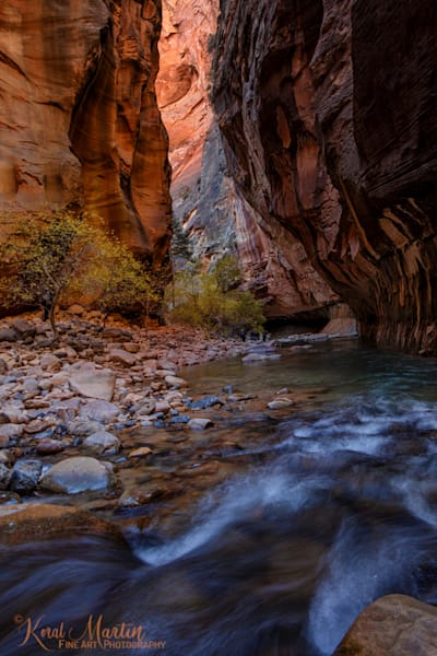 Zion Narrows Flow Photograph 2938 | Zion Narrows | Zion National Park | Canyon Photography | Koral Martin Fine Art Photography