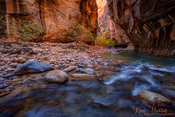 Zion Narrows Flow with Fall Trees 2956 | Zion Narrows | Zion National Park | Canyon Photography | Koral Martin Fine Art Photography