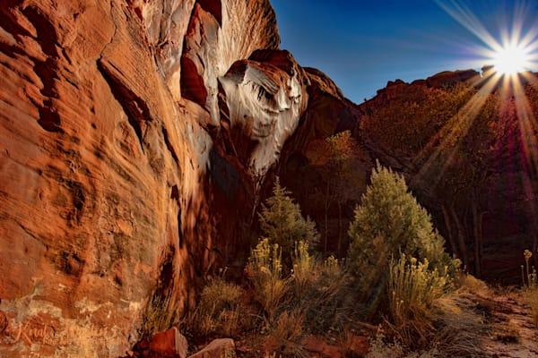 Neon Canyon Sunburst Photograph 2623| Golden Cathedral |  Canyon Photographs | Escalante Photography | Utah Photos | Koral Martin Fine Art Photography
