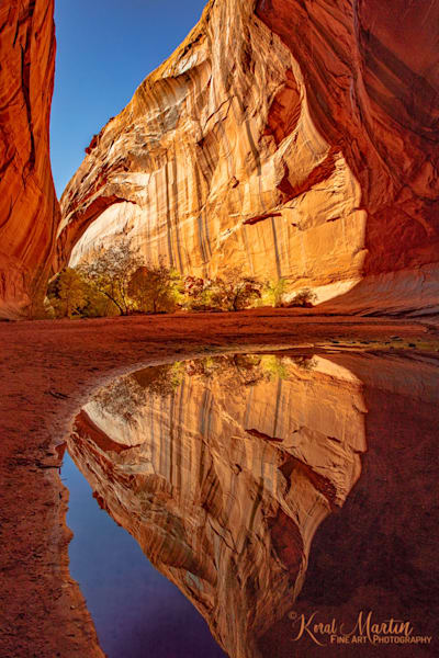 Golden Cathedral  Reflection Photograph 2754   Canyon Photographs   Escalante Photography   Utah Photos   Koral Martin Fine Art Photography
