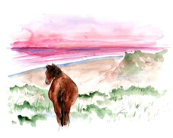 Wild Horse 6