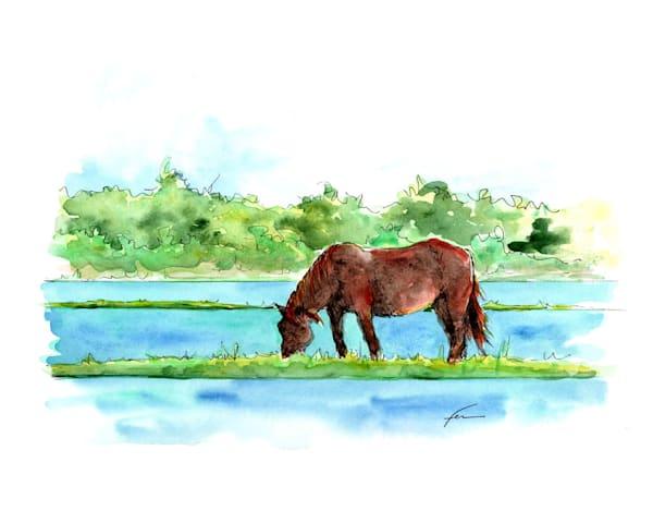 Wild Horse 5