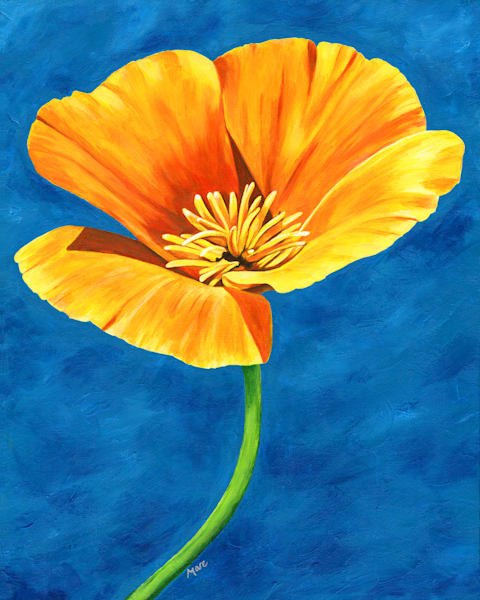 """Radiance"" a brightly painted original acrylic artwork by Mary Anne Hjelmfelt of a gold poppy flower on a blue background."