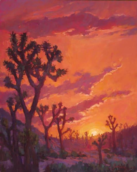 Joshua Tree Glow Rose Irelan