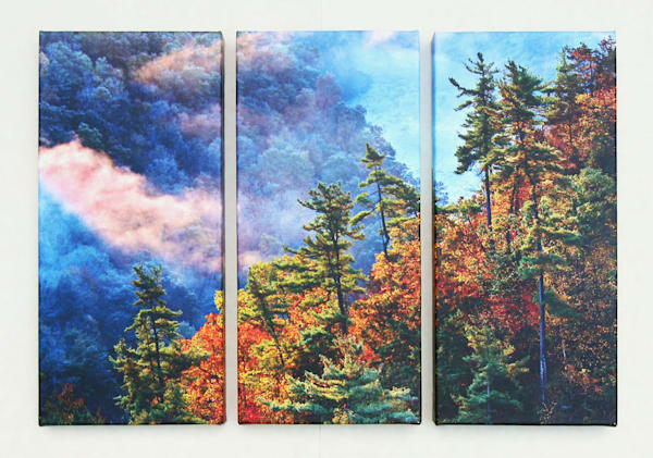 """Into the Gorge"" - Regular Triptych"