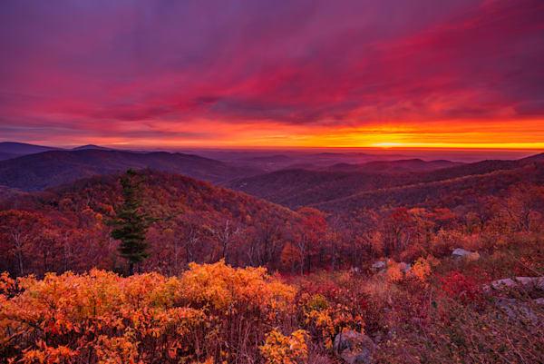 Shenandoah Sunrise at Buck Hollow