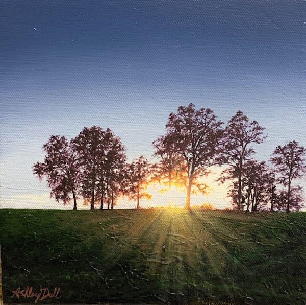 Light-filled Original Landscape Oil Paintings For Sale.