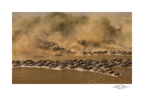 The Mara Crossing Photography Art | Tim Laman