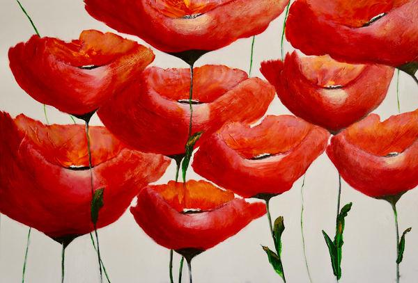 Poppies In Bloom Art | Marie Art Gallery