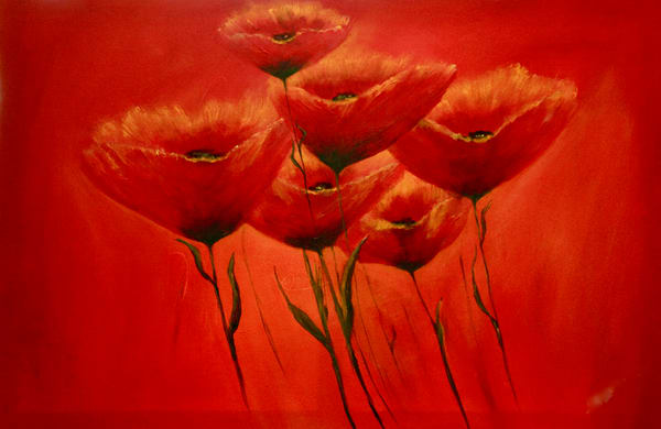 Red On Red Poppies Art | Marie Art Gallery