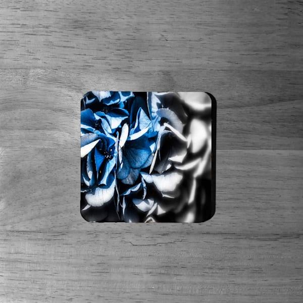 ART: Fading Hydrangea