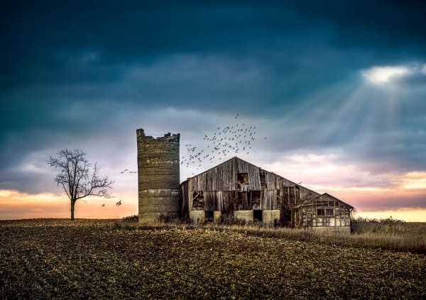 Withstanding Time Photography Art | Trevor Pottelberg Photography