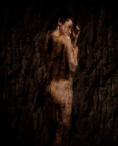 Sazze In Stone Photography Art | Dan Katz, Inc.