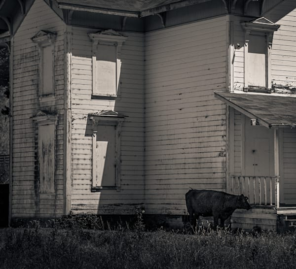 Abandoned House Pt Reyes Photography Art | Dan Katz, Inc.