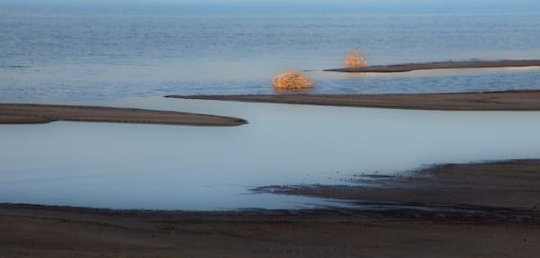 Marsh Great Salt Lake