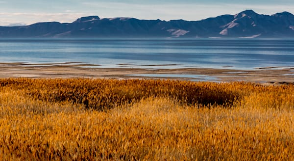 Antelope Island Salt Lake Photography Art | Dan Katz, Inc.