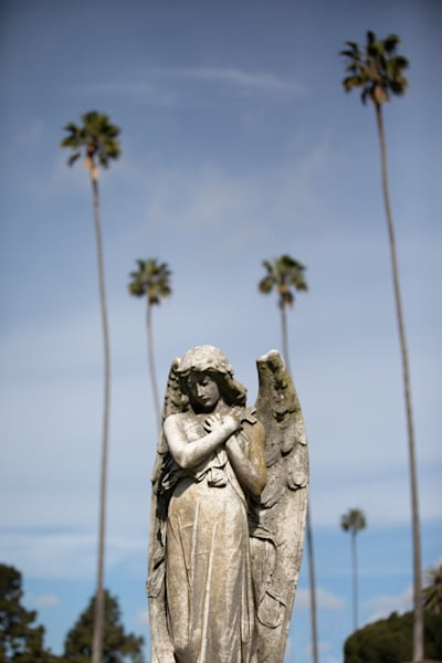So Cal Angel Photography Art | Dan Katz, Inc.
