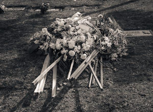 Floral Farewell Photography Art | Dan Katz, Inc.