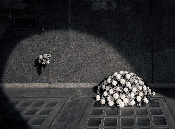 Sunlit Remembrances