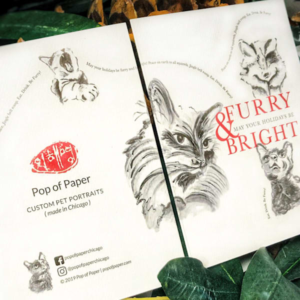 Cats 2: Furry & Bright Art | Youngi-Sumistyle pets