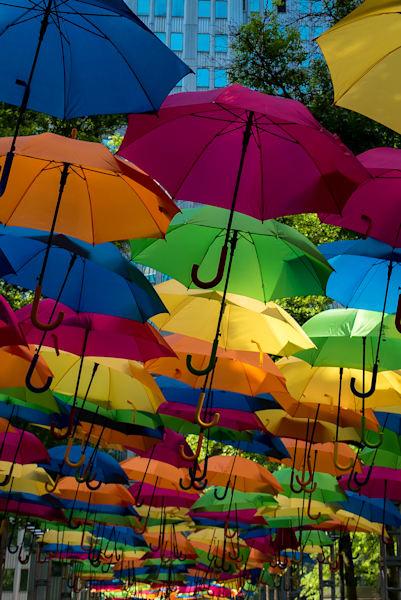Umbrella Downtown Art   Brandon Hirt Photo