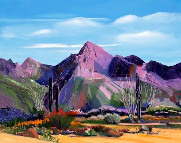 Pink Ocotillo at Pusch Ridge by Diana Madaras