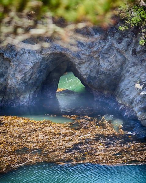 Point Lobos 2 Photography Art   Rosanne Nitti Fine Arts