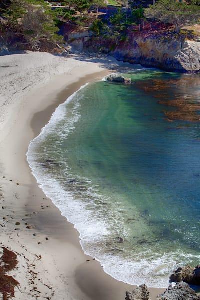 Point Lobos 4 Photography Art   Rosanne Nitti Fine Arts