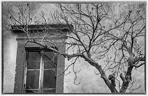 Orvieto Photography Art | Rosanne Nitti Fine Arts