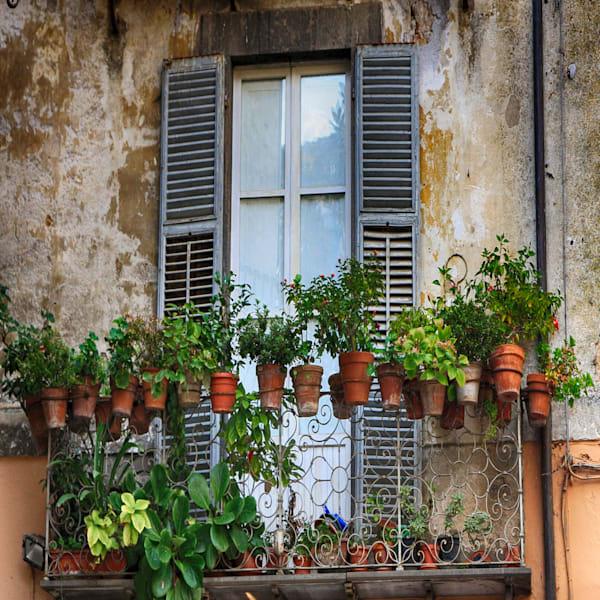 Window 3 Photography Art | Rosanne Nitti Fine Arts