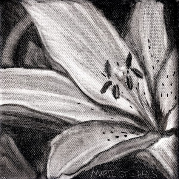 Spotted Asiatic Lily 5x5 Oil Copyright Marie Stephens 2019 Art   Marie Stephens Art