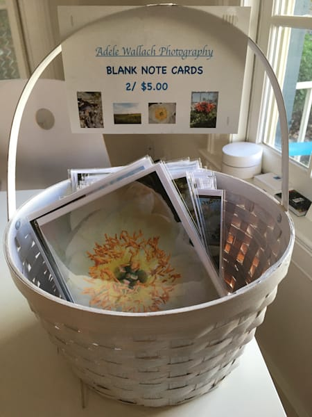 Adele Wallach Photography Blank Note Cards
