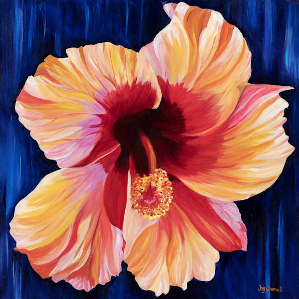 Glowing Hibiscus
